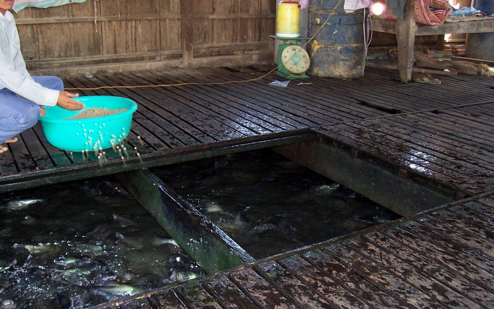 Hausboot im Mekong-Delta - Vietnam - Fischerfamilie