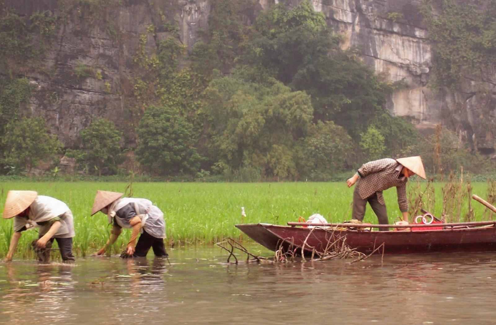 Landschaft Tam Coc - Vietnam