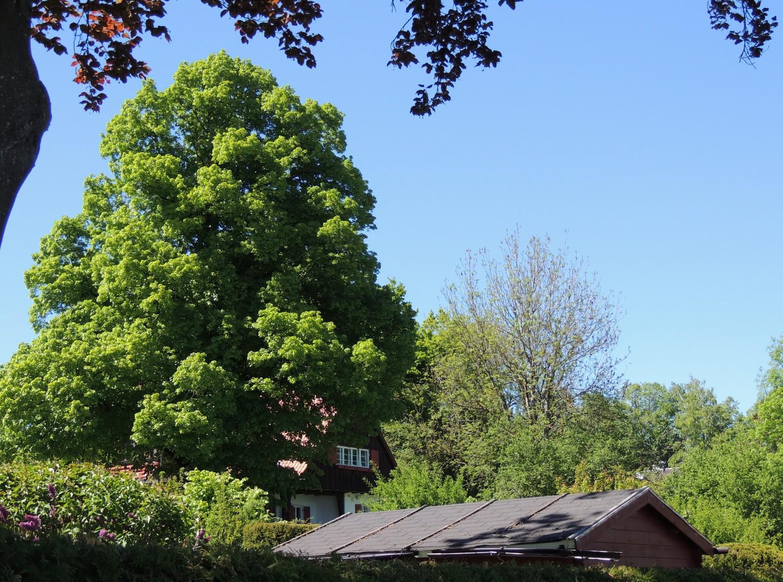 Villa in Schondorf am Ammersee