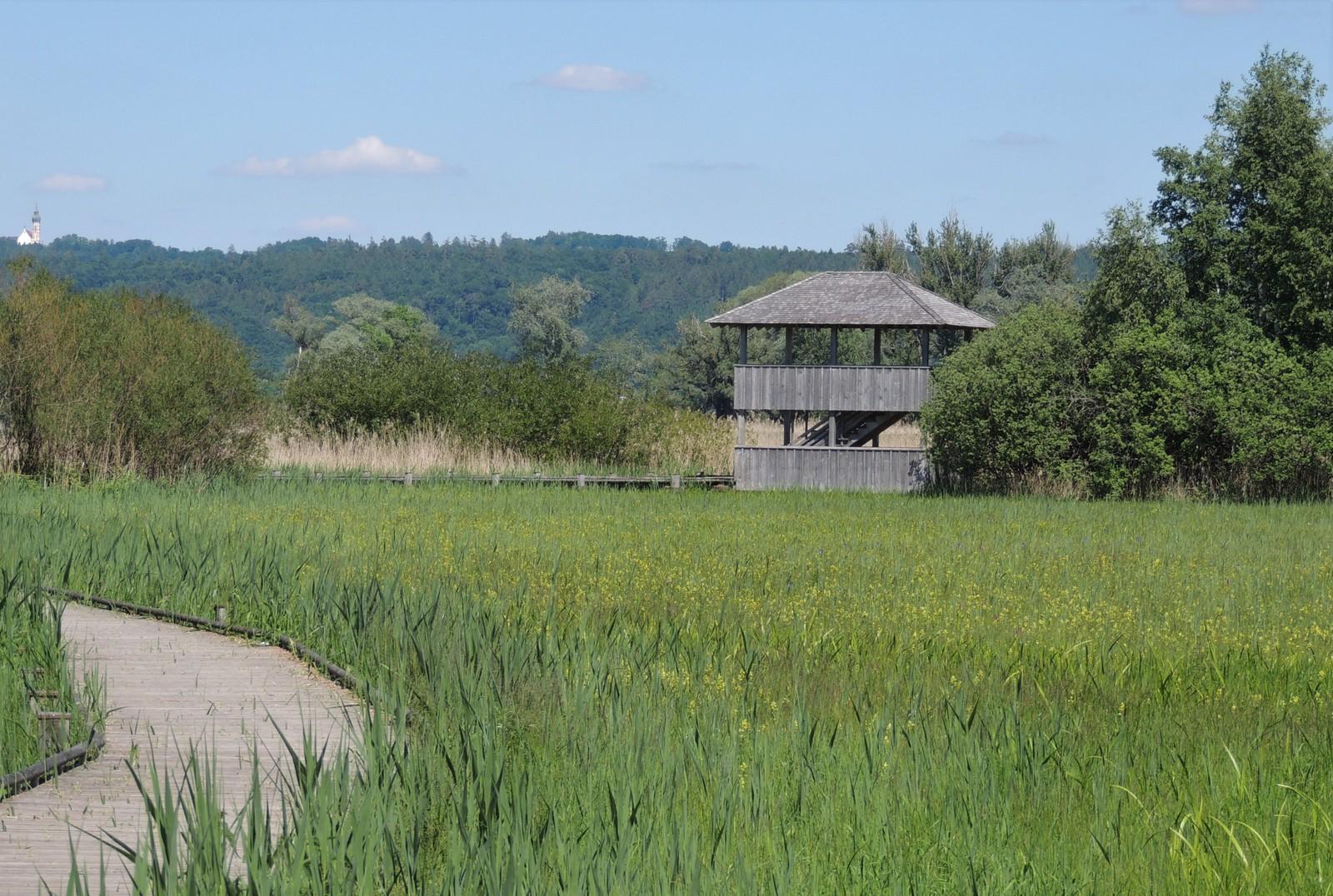 Vogelfreistätte Ammersee-Südufer - Beobachtungsturm