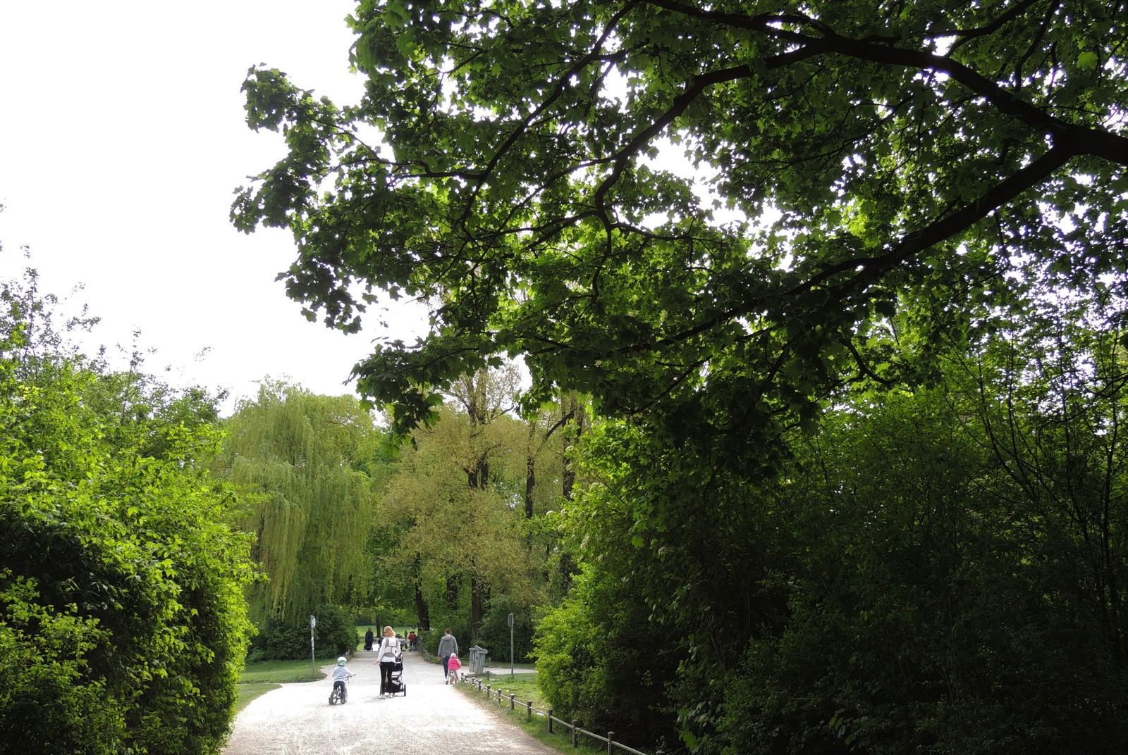 Der Englische Garten - an der kleinen Karl-Theodor-Wiese