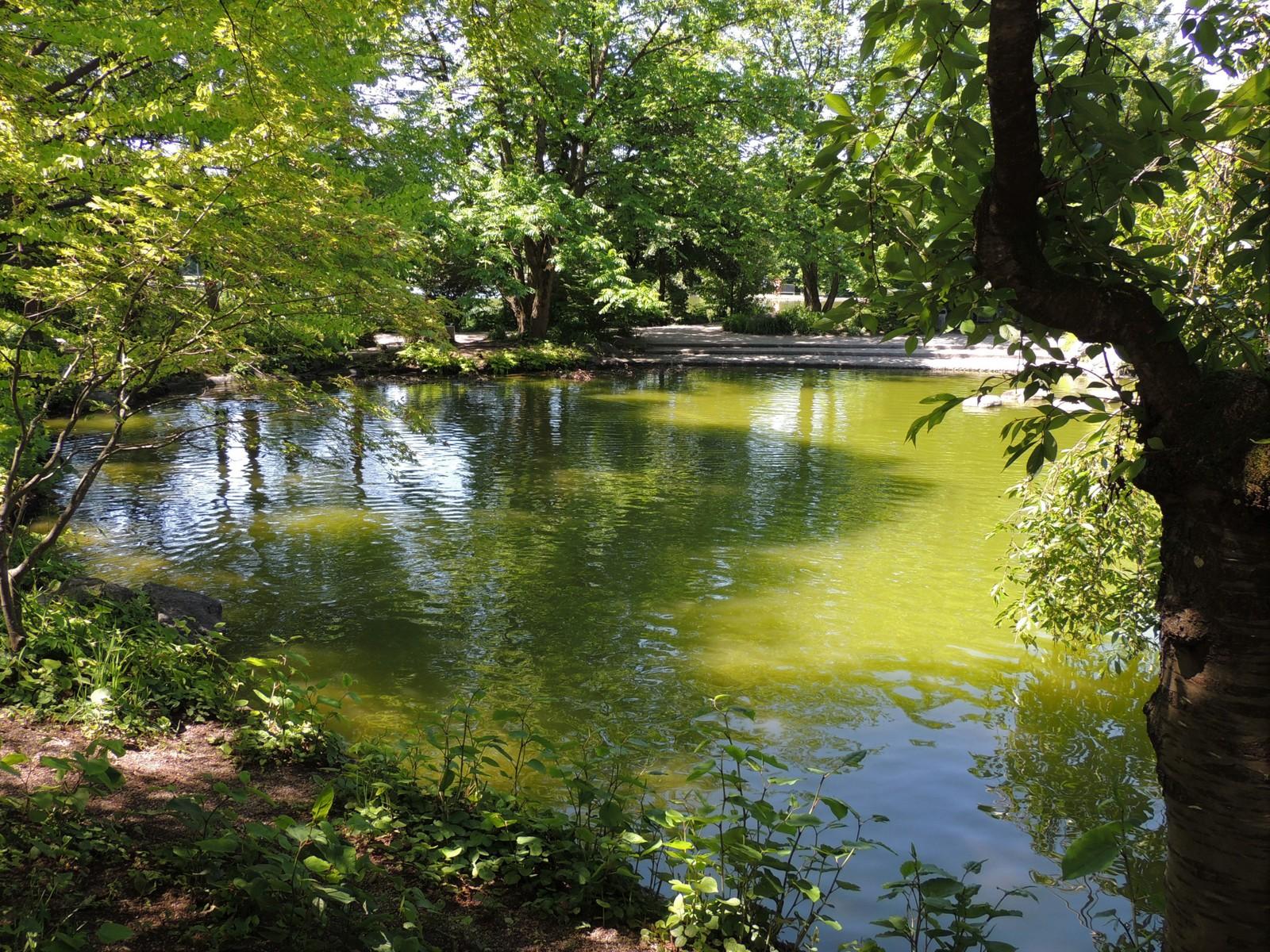 Japanischer Garten im Westpark München