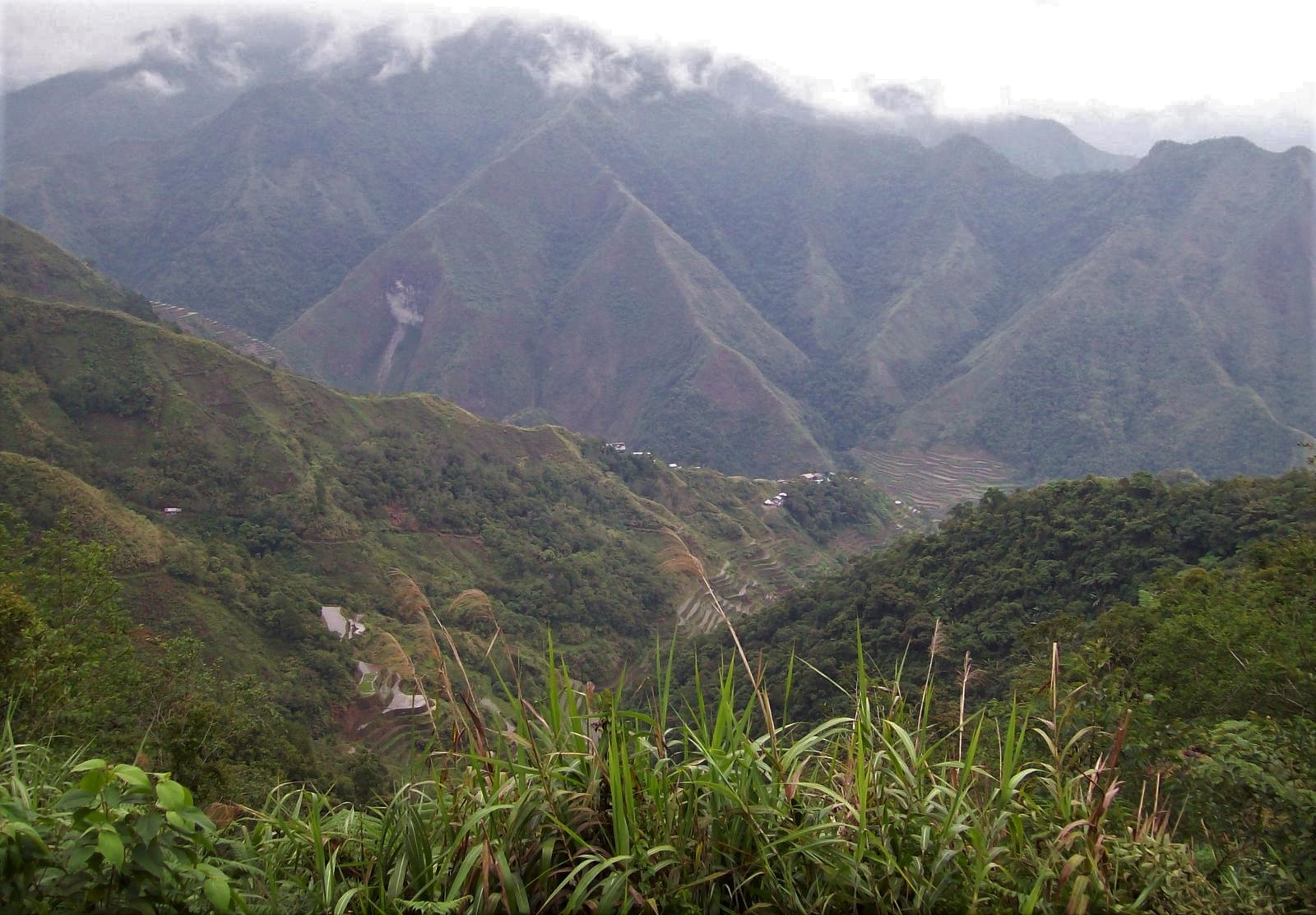 Reisterrassen von Batad in den Kordilleren - Luzon