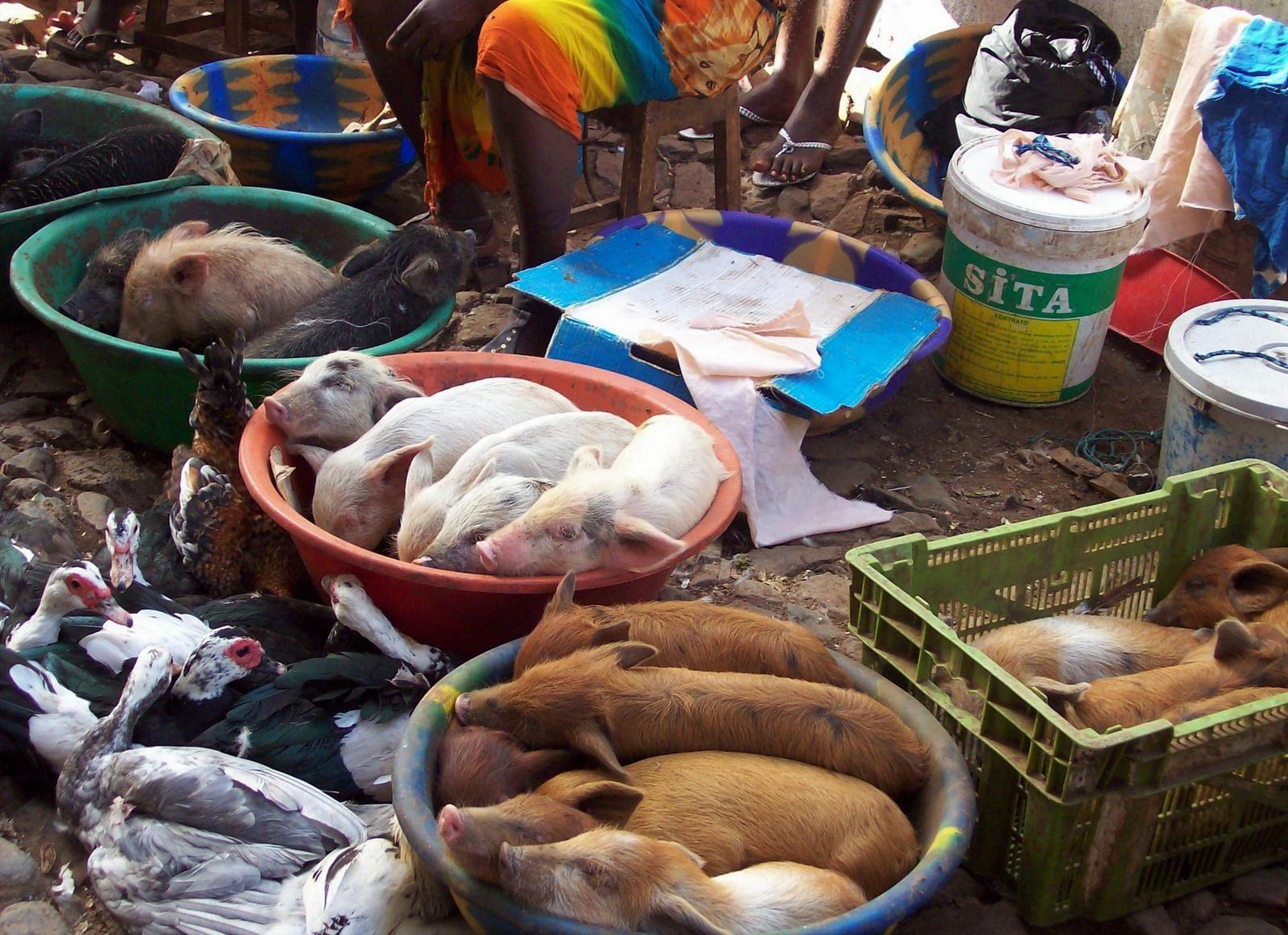 Markt von Praia - Kapverden