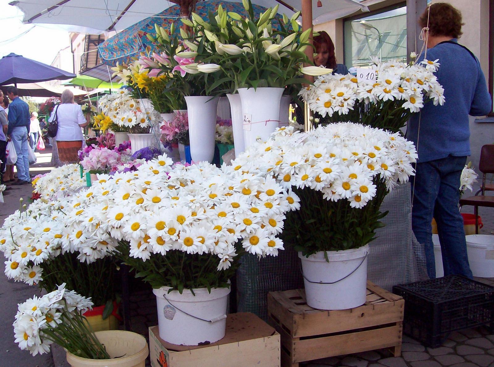 Blumenmarkt Riga