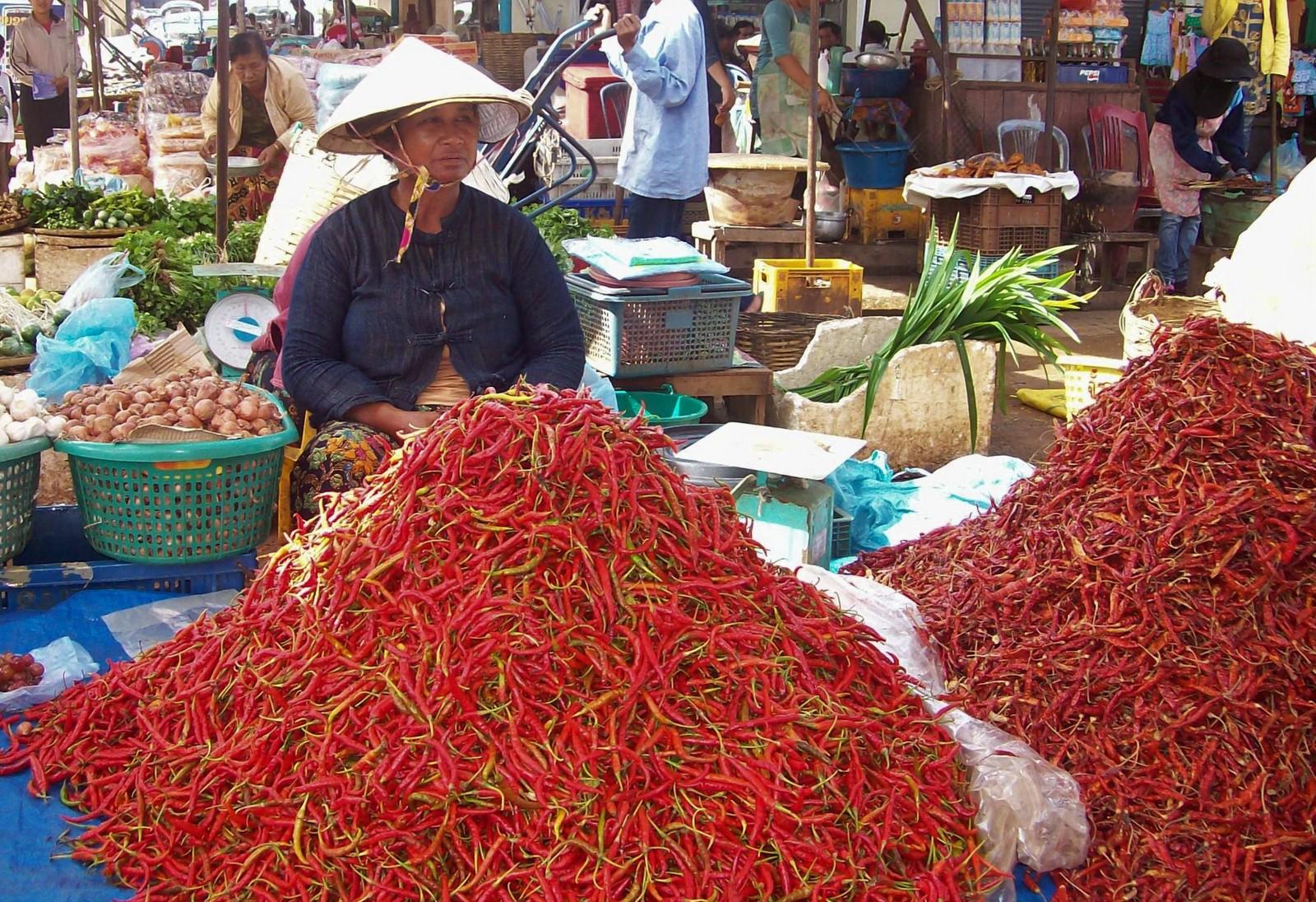 Chiliverkäuferin auf dem Markt von Pakse - Laos