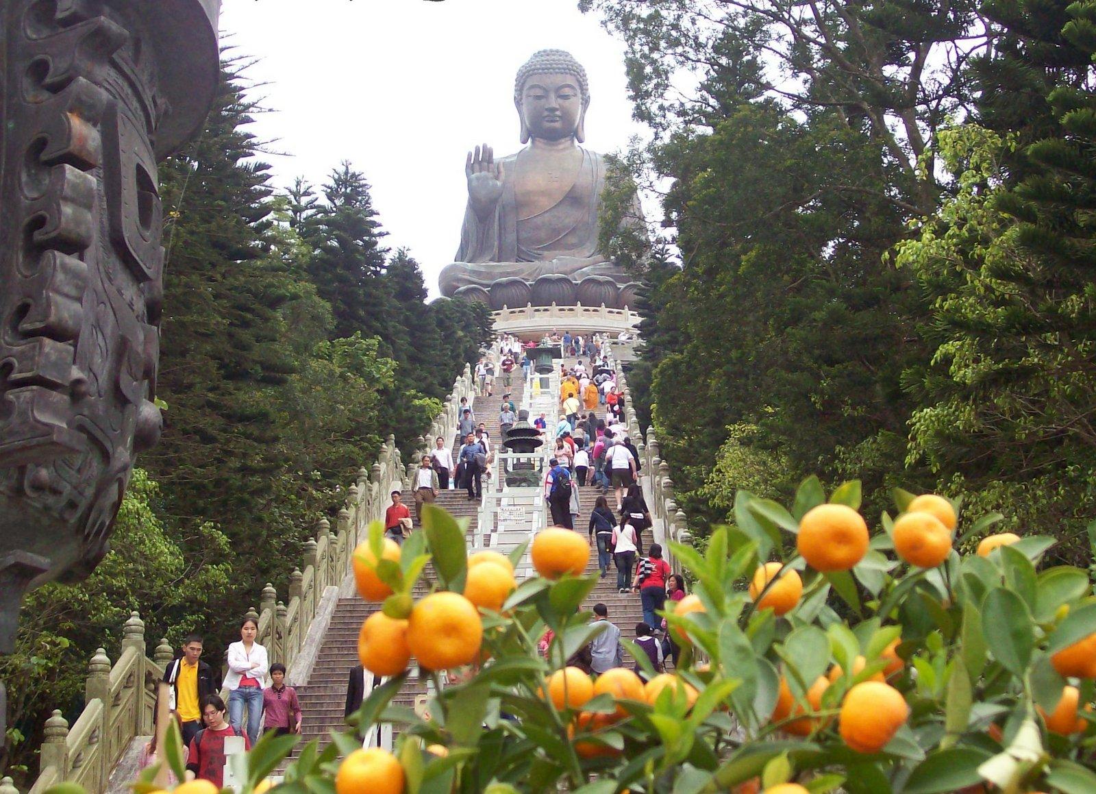 Tian Tan Buddha Lantau