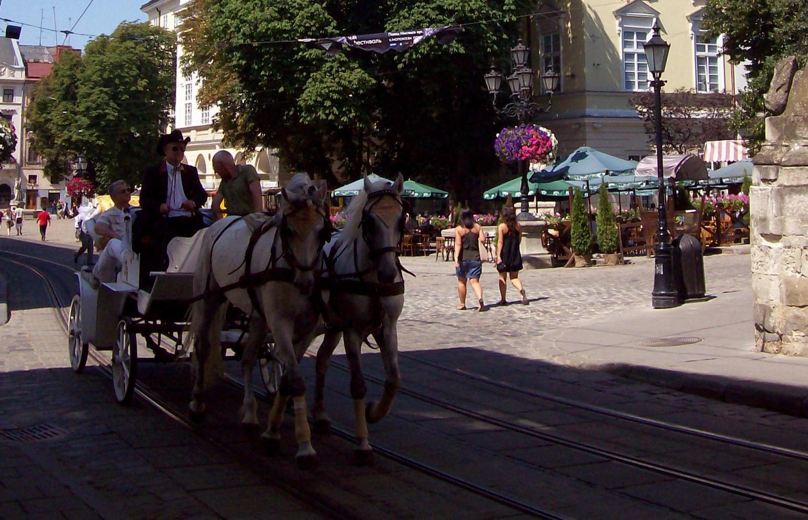 Pferdekutsche auf dem Rynok von Wliw