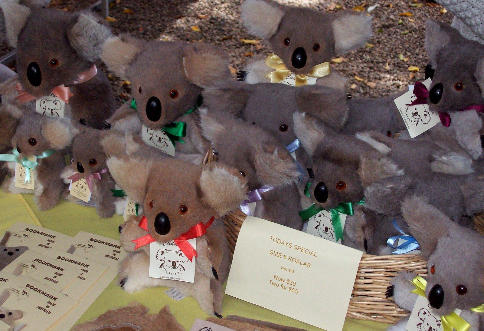 Koala Souvenirs