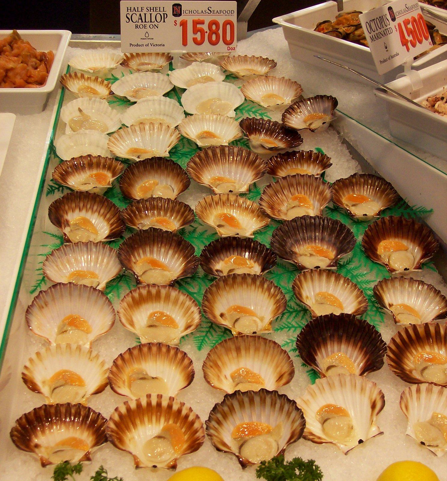 Jakobsmuscheln im Fischmarkt Sydney