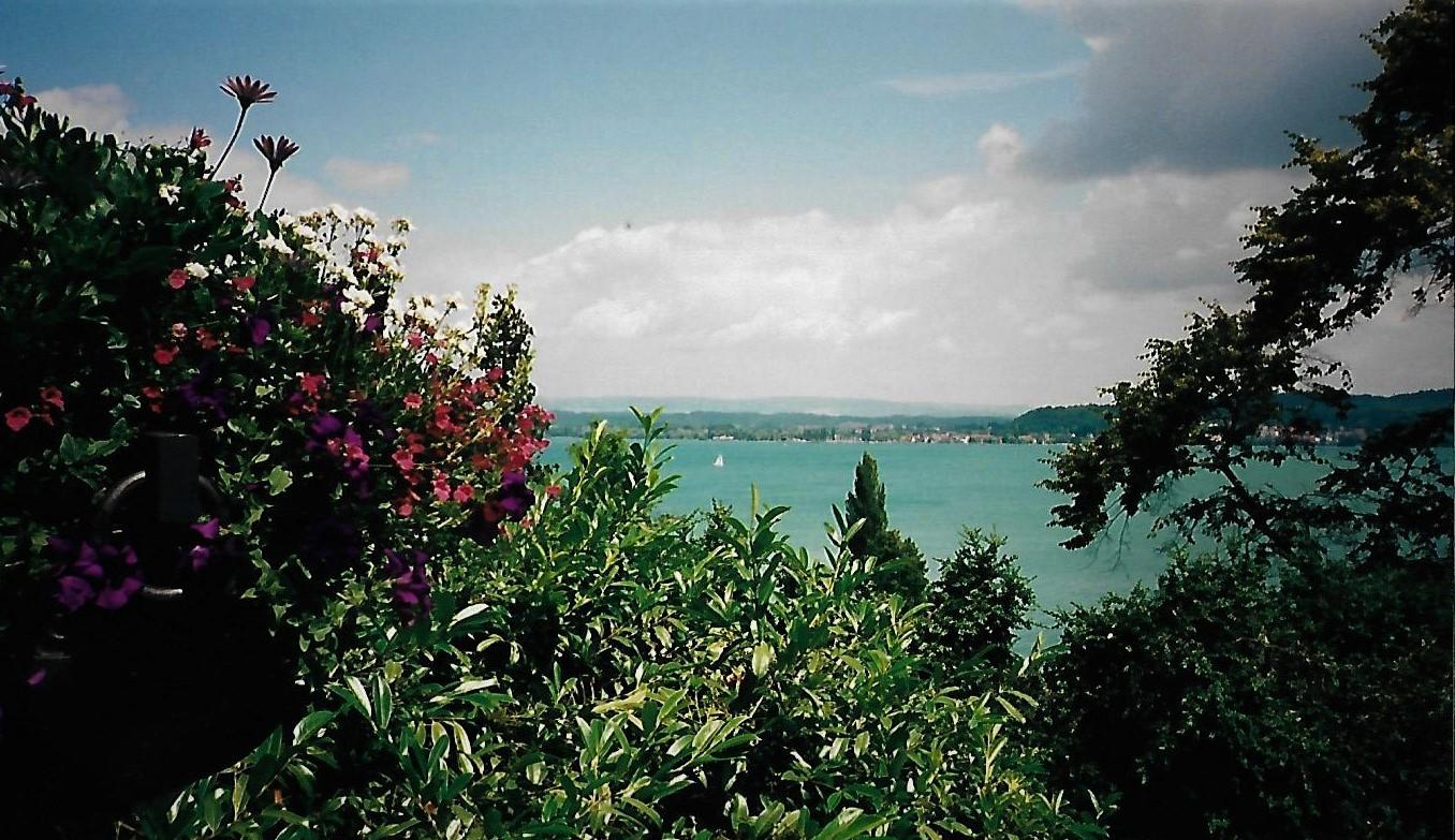 Der Überlinger See