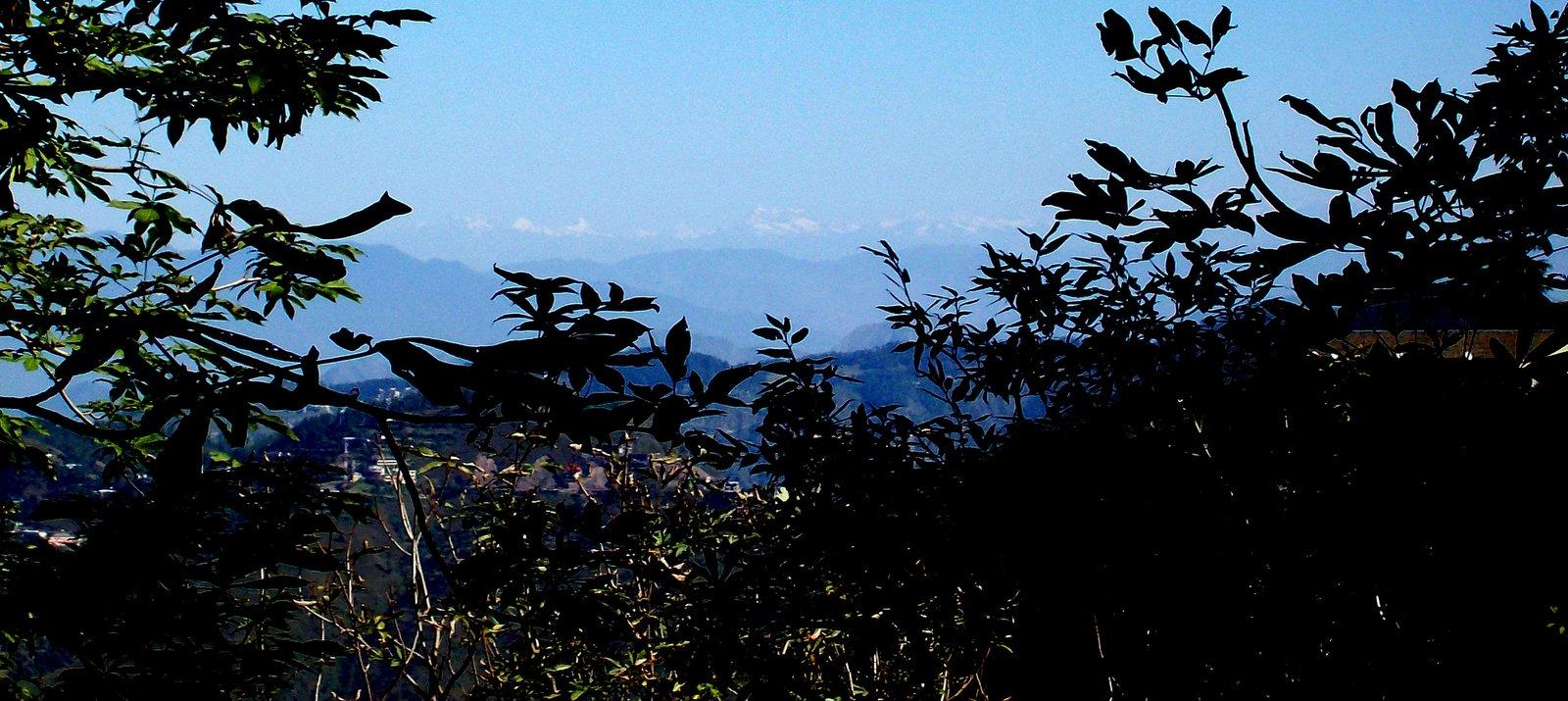 Ausblick von Shimla auf den Himalaya