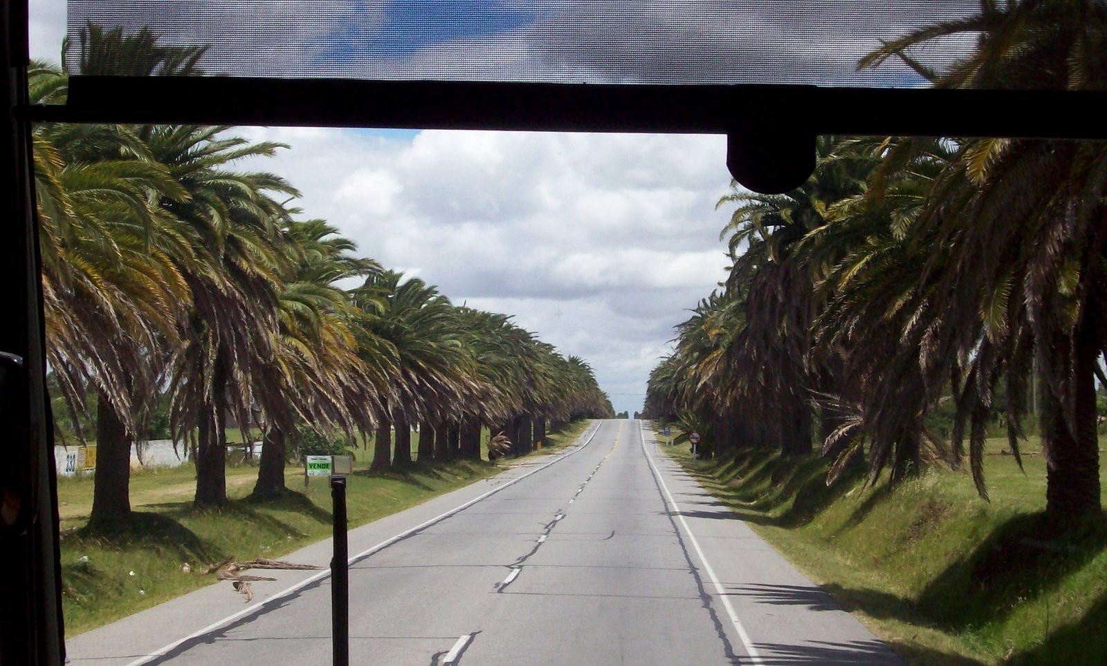 Linienbus COT Montevideo - Colonia del Sacramento