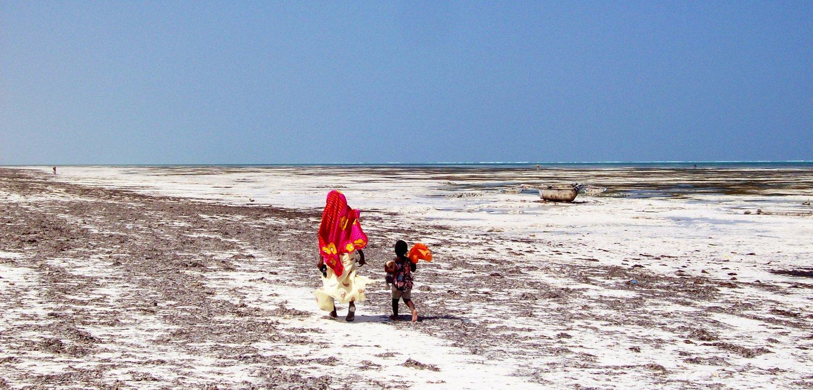 Ostküste von Sansibar