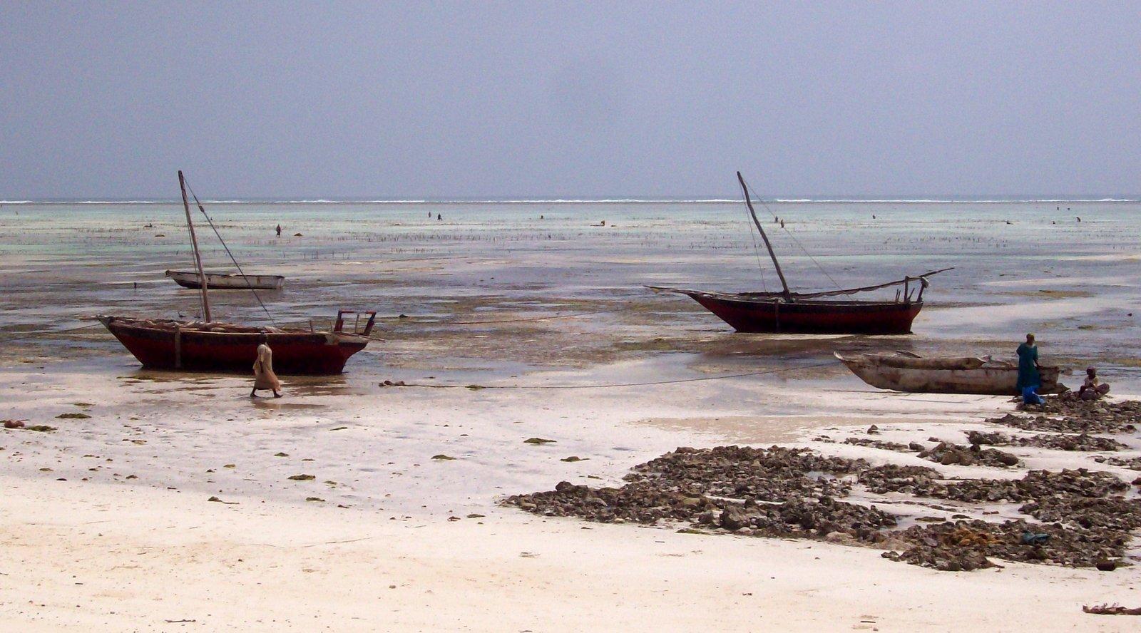 Nordostküste von Sansibar