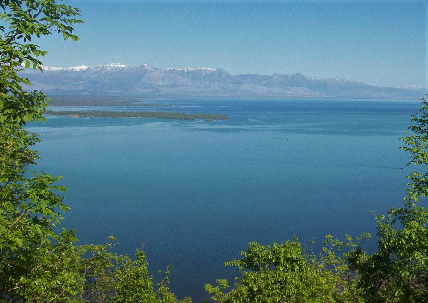 Skadarsee - Montenegro / Albanien