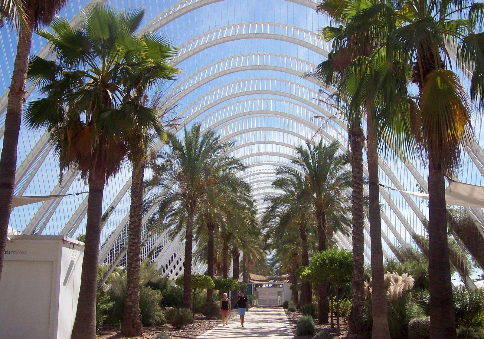 """Palmenallee - Die """"Ciudad de las Artes y las Ciencias"""