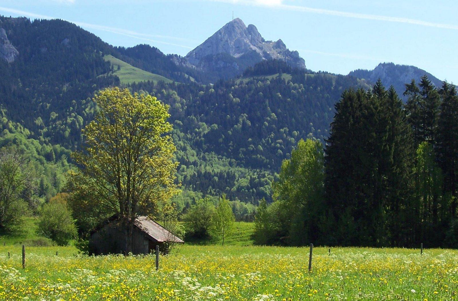 Vom Wendelstein zum Schliersee