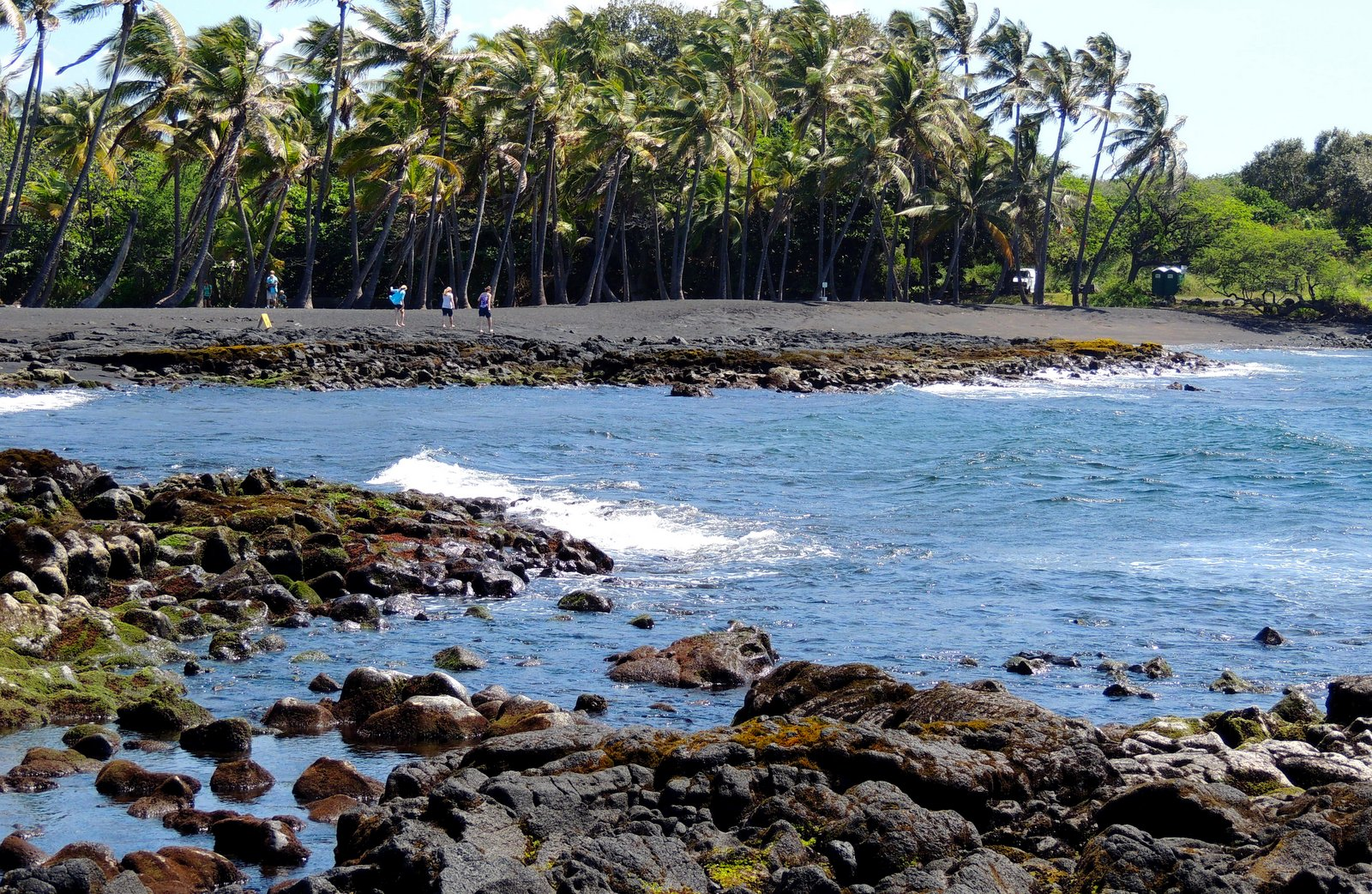 Punalu`u Beach Hawaii