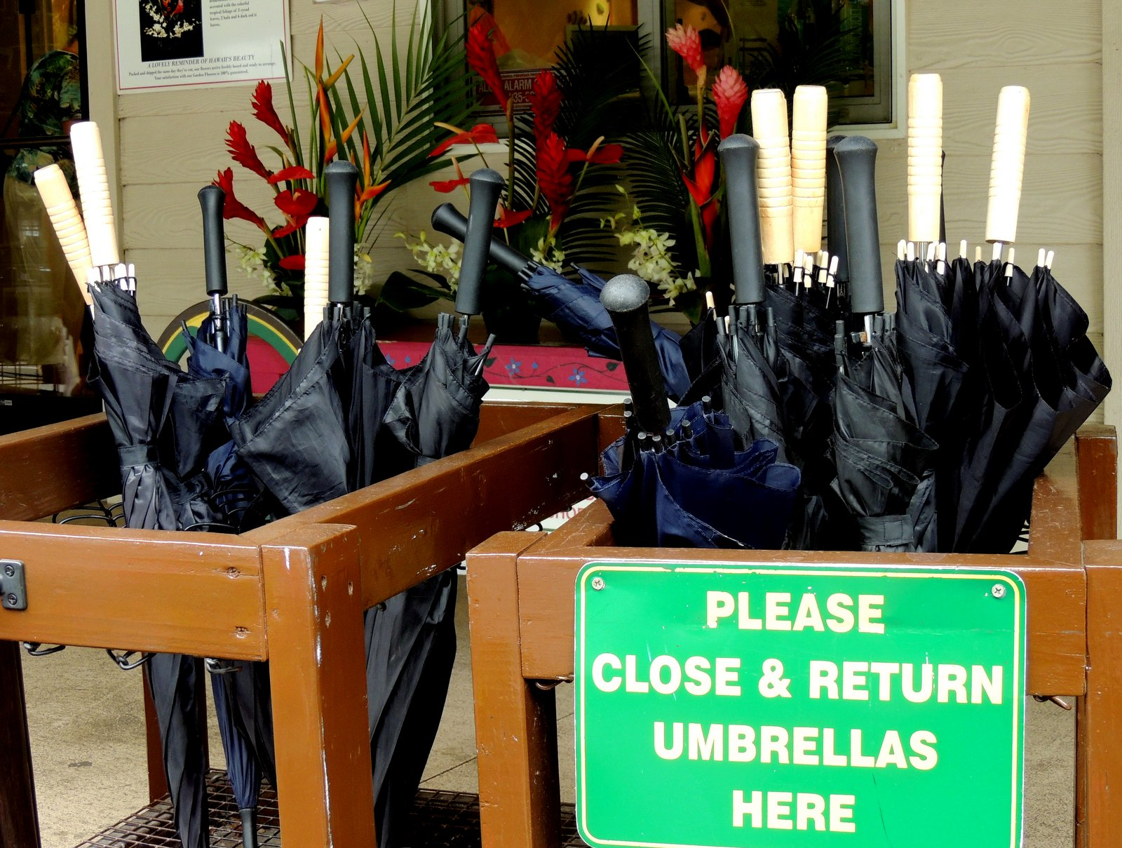 Akaka Falls State Park Hawaii - Regenschirme zum Ausleihen