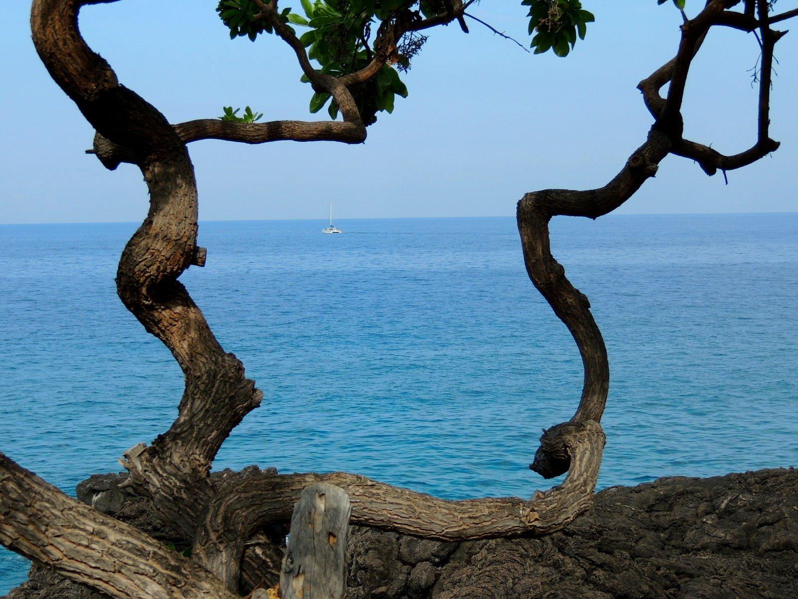 Kona-Küste Hawaii
