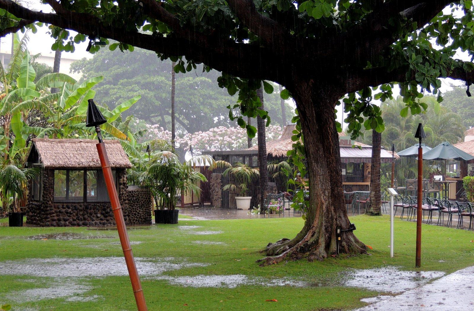 Kaanapali Beach Hotel - Maui