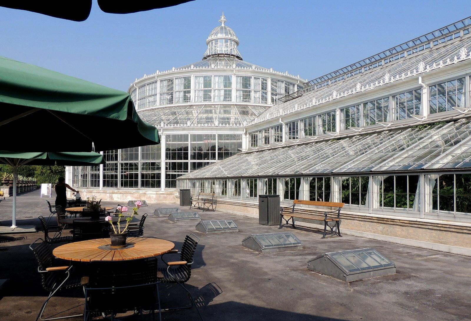 Palmenhaus im Botanischen Garten von Kopenhagen