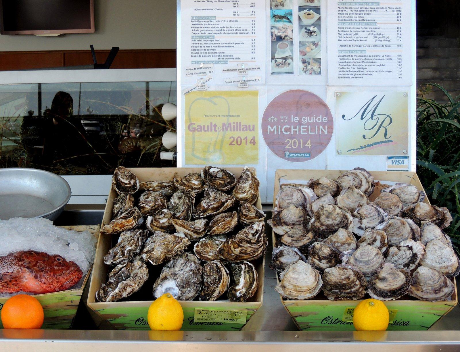 Austern-Restaurant in Bastia