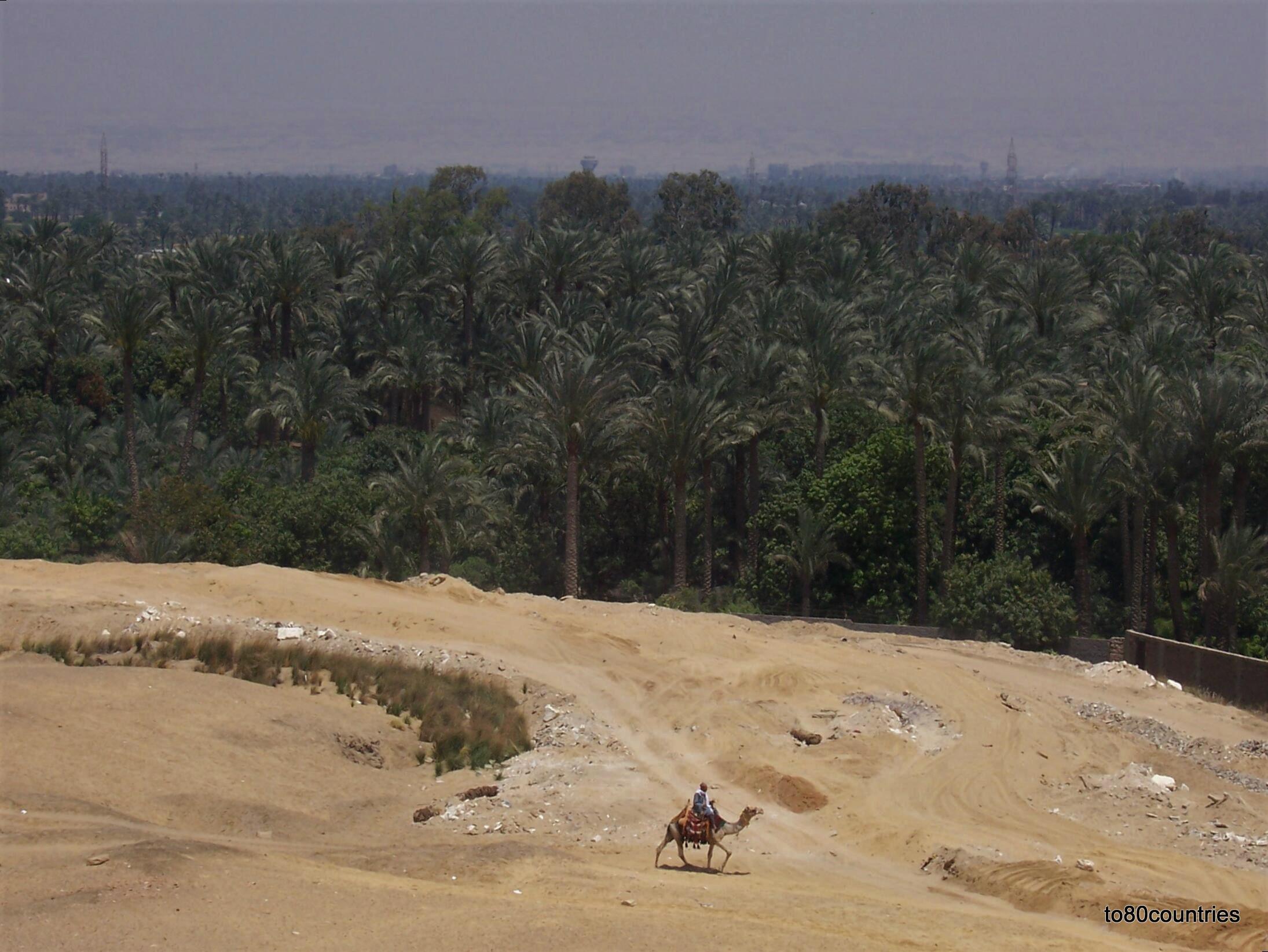 Blick von Sakkara auf das Niltal