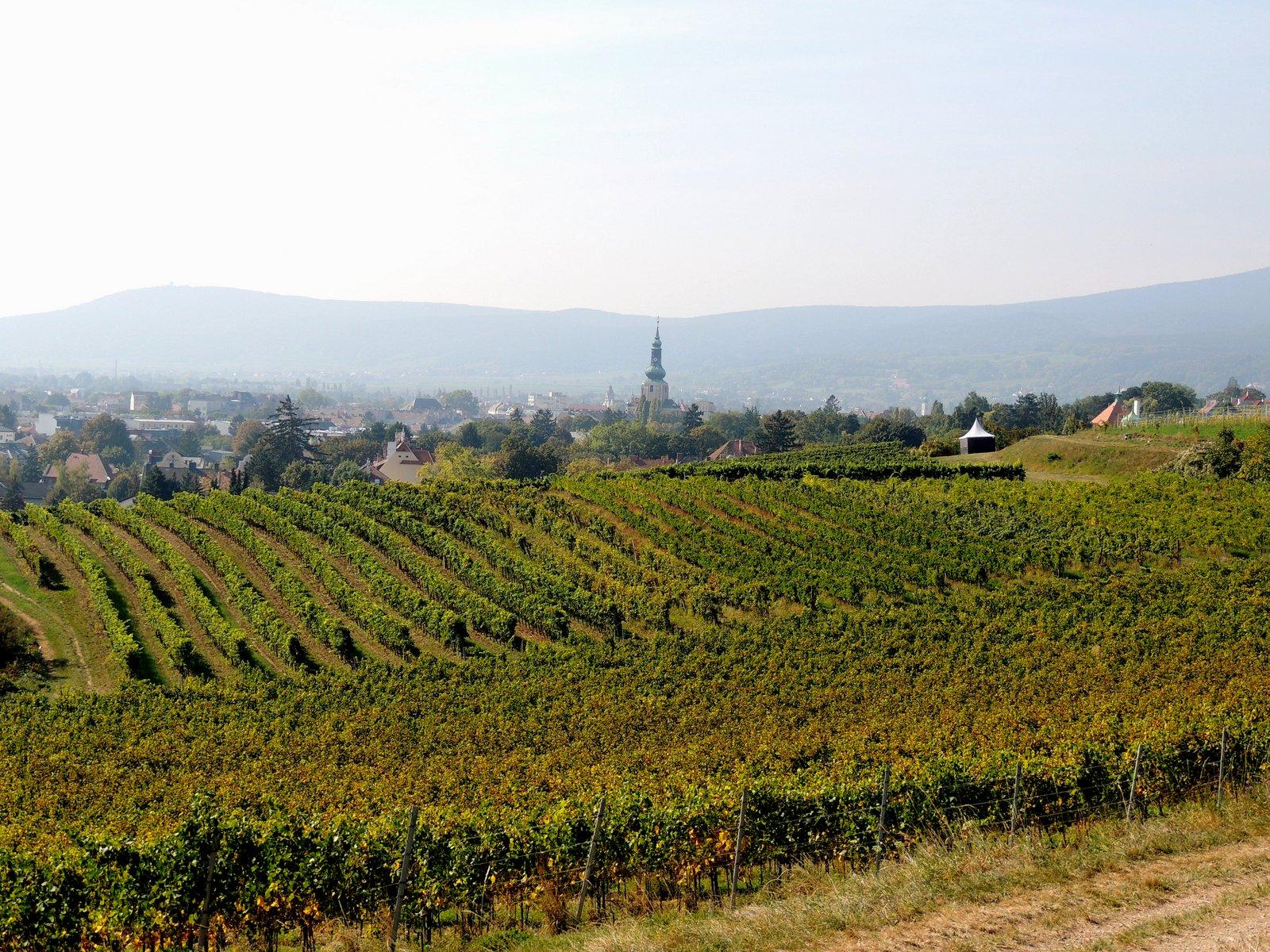 Blick auf Baden bei Wien