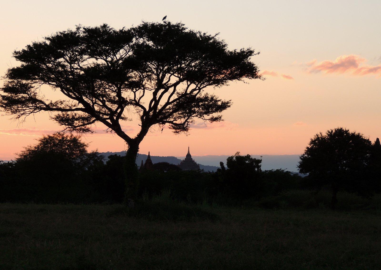 Bagan / Burma