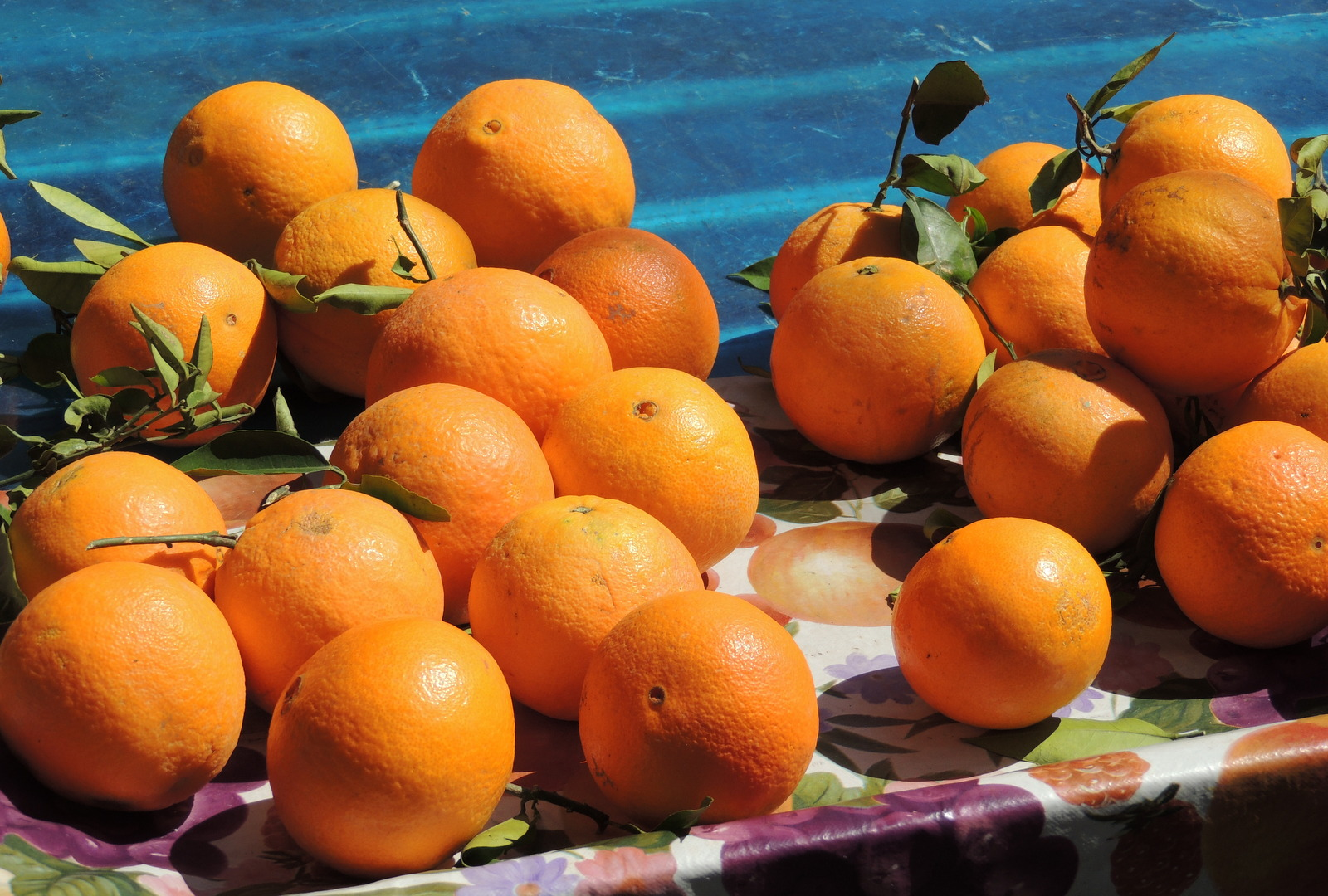 Orangen auf dem Markt von Catania