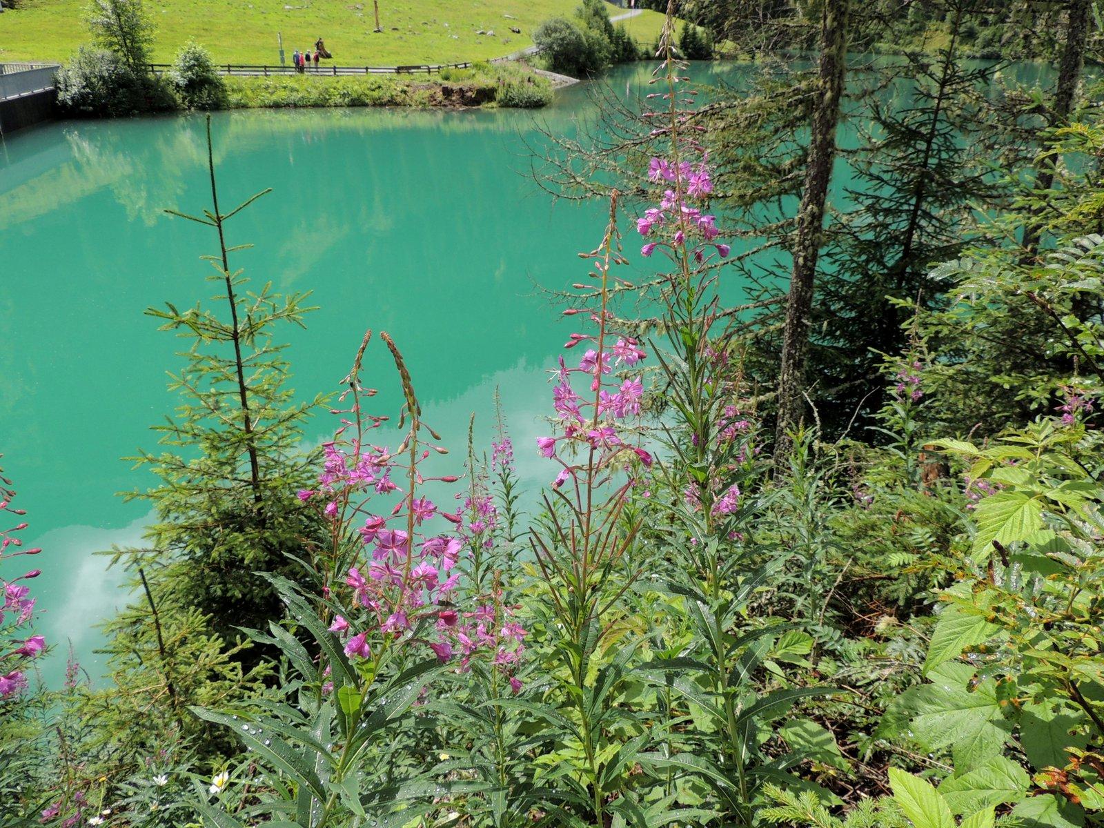 Verwalltal Stausee Arlberg