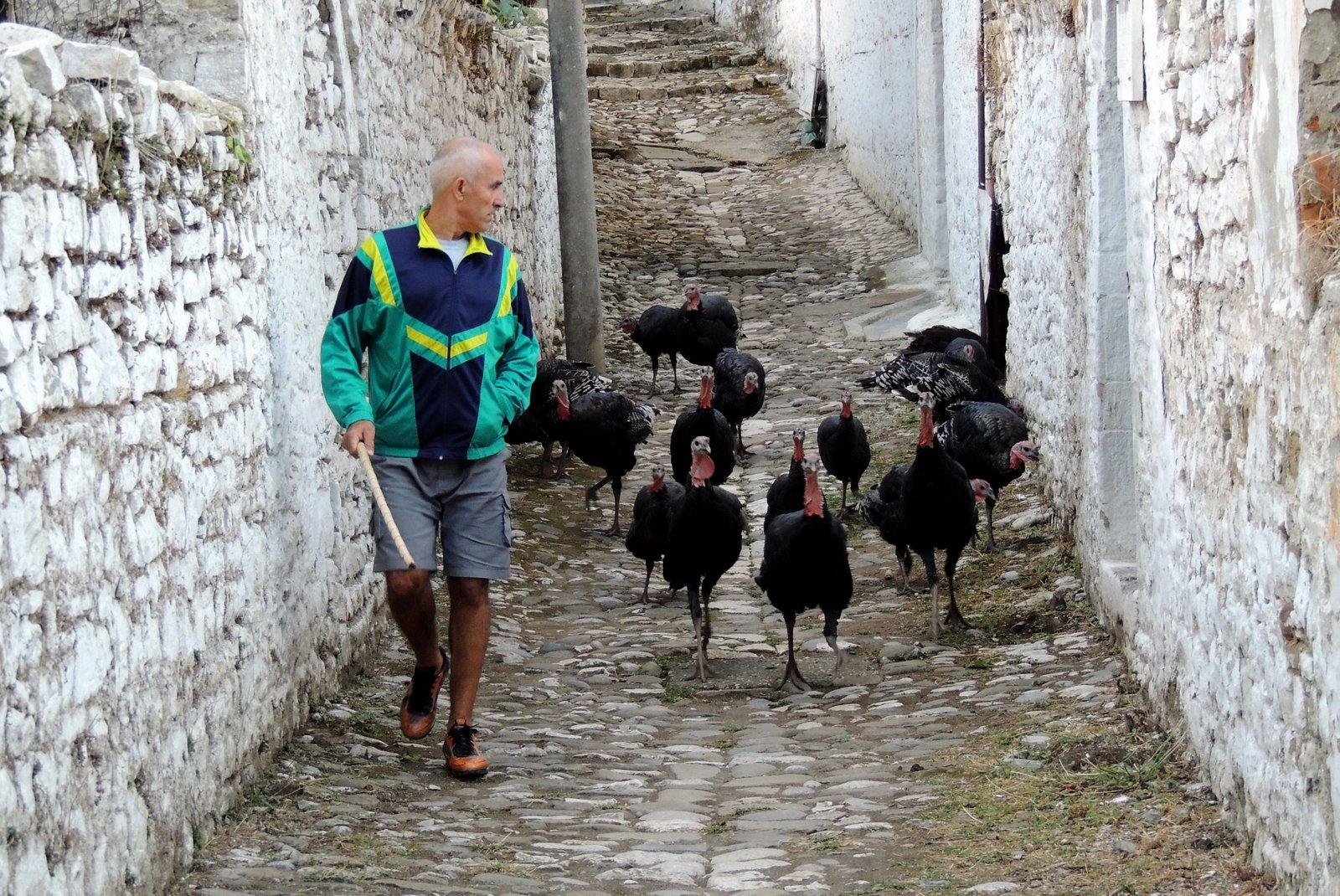 in Berat Albanien