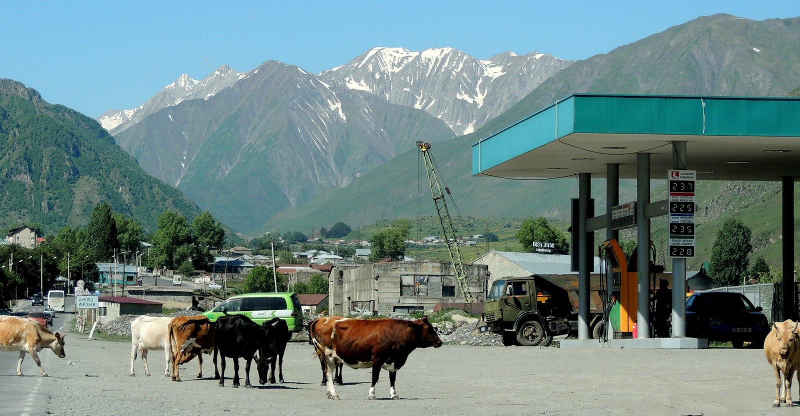 Tankstelle an der Georgischen Heerstraße