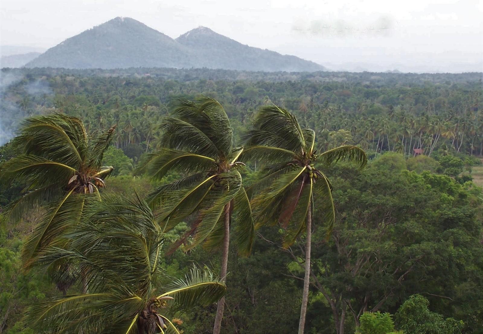 Gegend um die Felsenfestung Yapahuwa - Ceylon