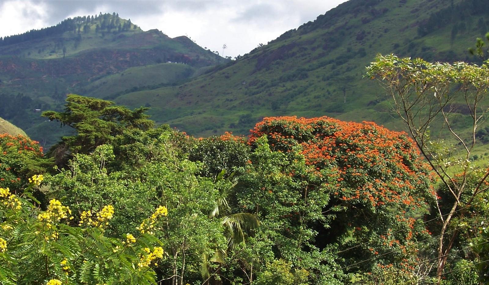 Nationalstraße A 7 - Ceylon