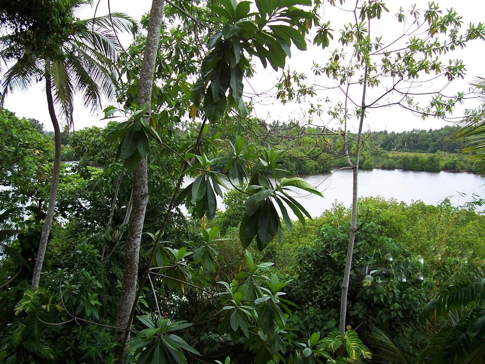 Bird Lake bei Hikkaduwa