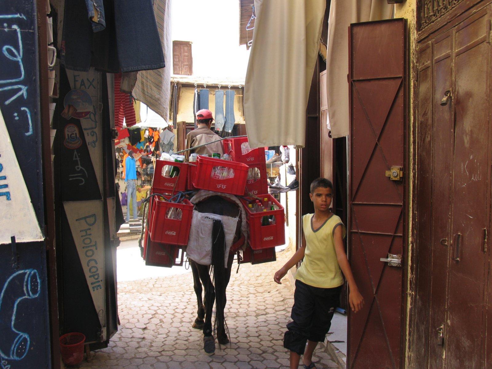 Foto vom FVA Marokko