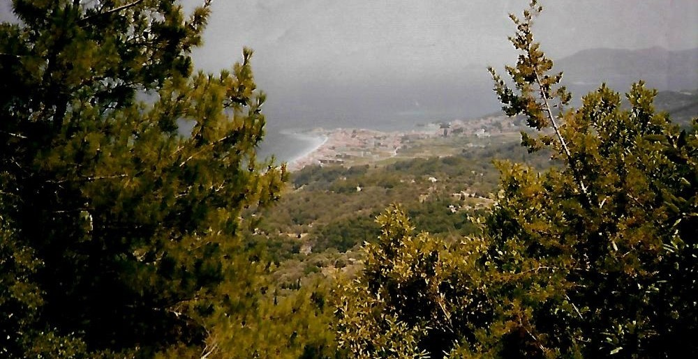 Blick auf Kokkari / Samos